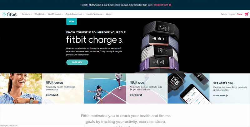 fitbit workout app and device